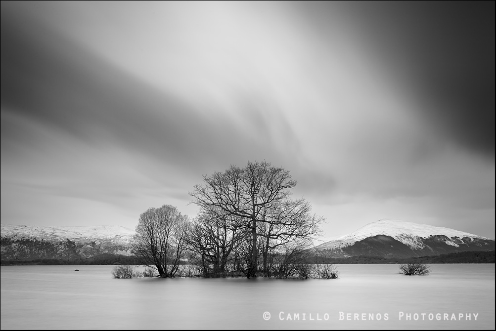 Submerged trees in a lake in Scotland on a cloudy winter day after some fresh snow has fallen on the hills